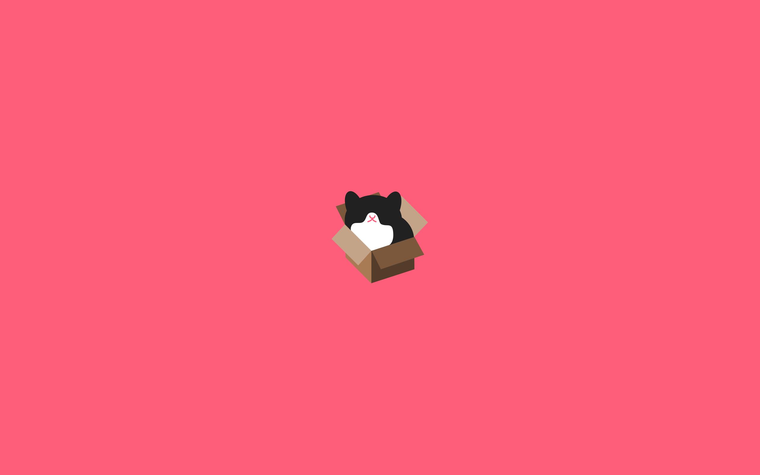 シンプルな猫のデスクトップ壁紙 ネコまにあ 猫動画や癒し猫 面白い
